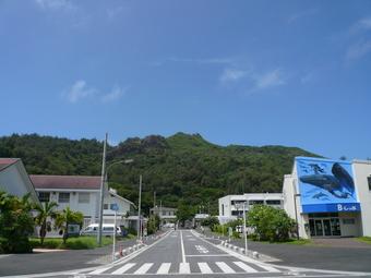 小笠原の風景